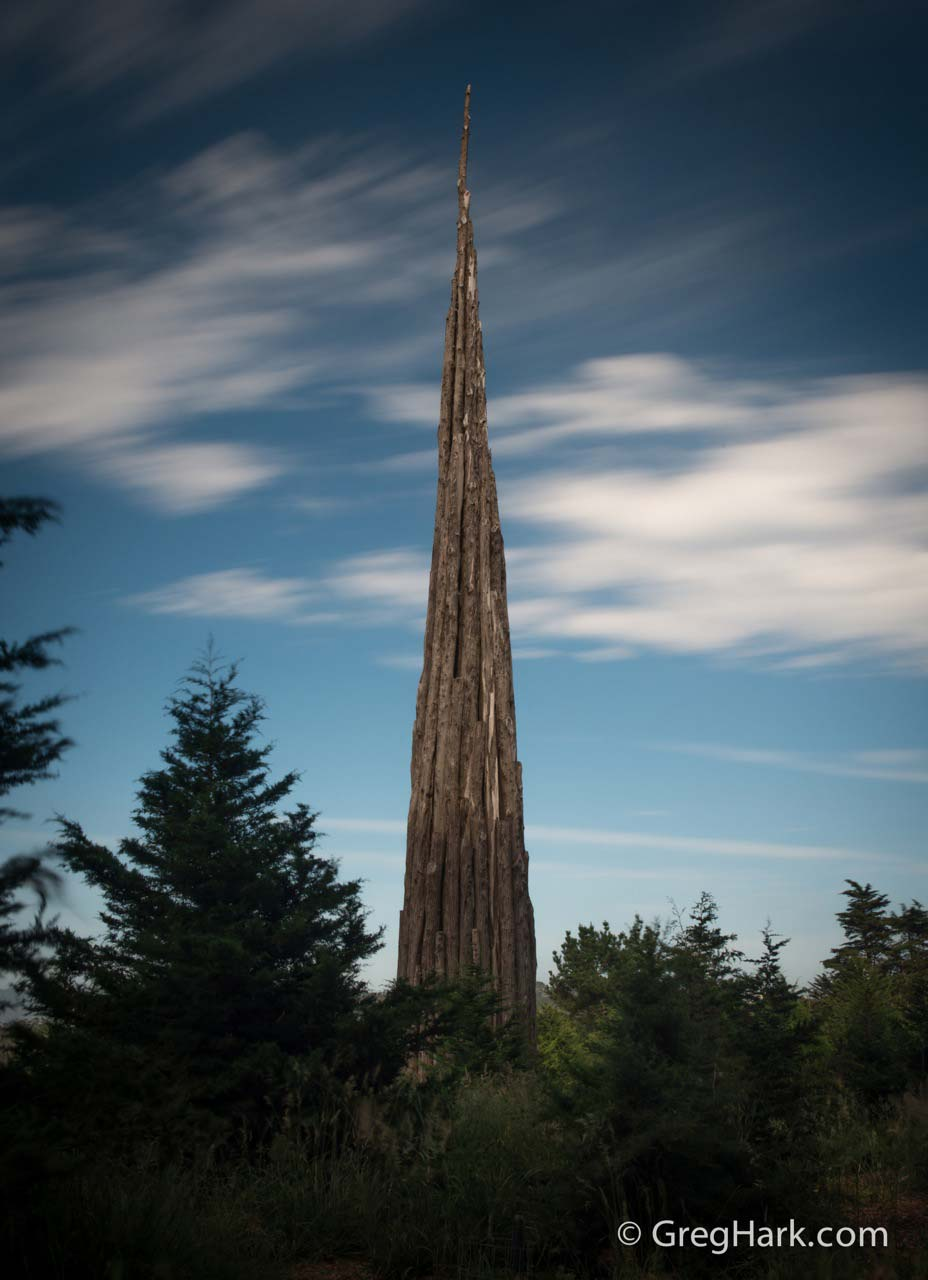 Presidio Forest of San Francisco, California andy-goldsworthy-art- presidio,